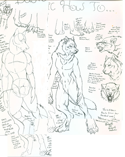 Anthro wolf tutorial